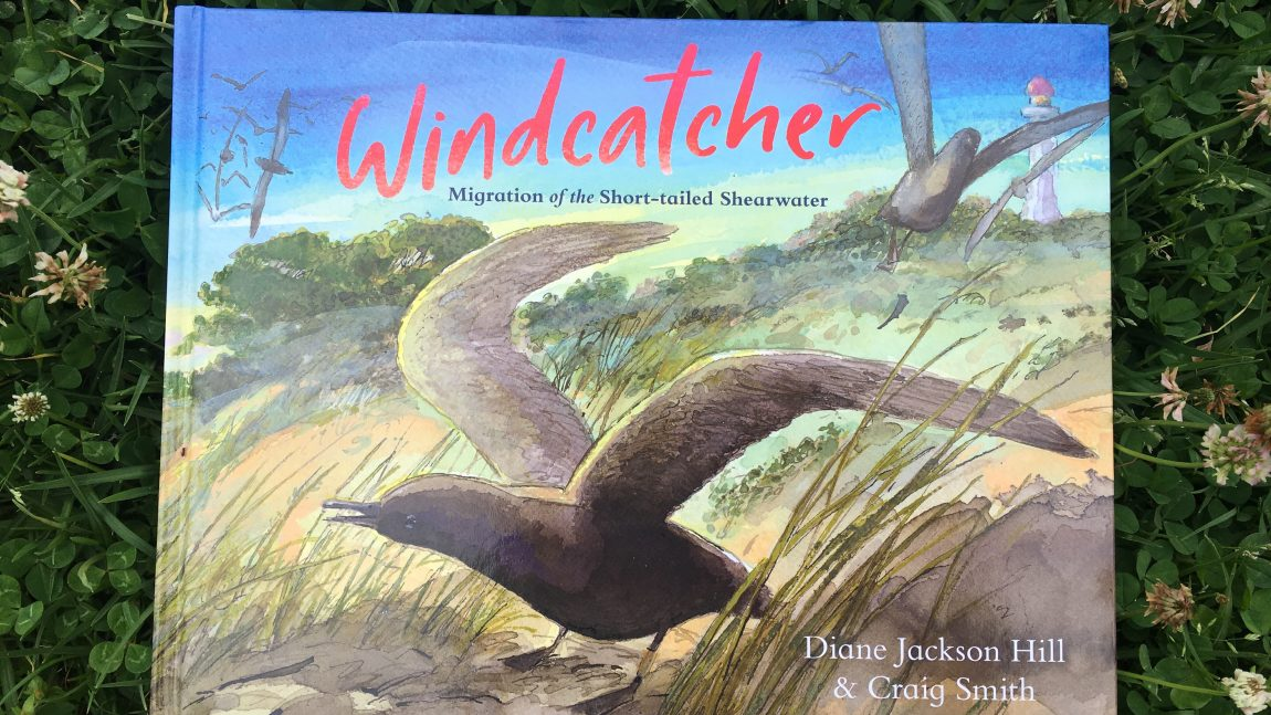 Windcatcher: The migration of the short-tailed shearwater. By Diane Jackson Hill and Craig Smith