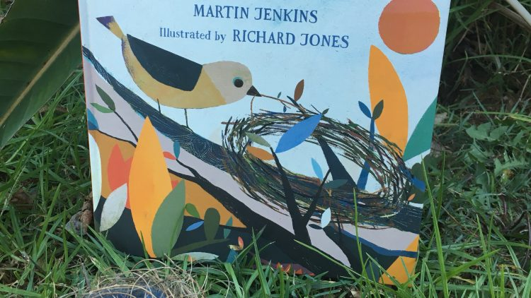 A science storybook about forces: Bird builds a nest by Martin Jenkins and Illustrated by Richard Jones