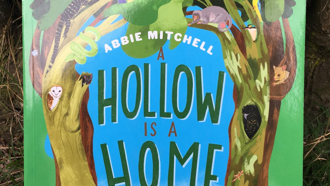A hollow is a home by Abbie Mitchell. Illustrated by Astred Hicks.