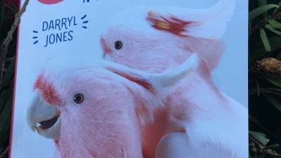 Feeding the Birds at your table. A guide for Australia by Darryl Jones.